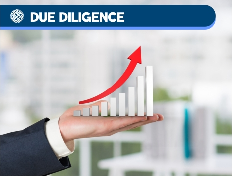 08 Due Diligence