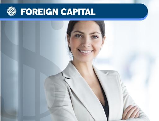 01 Advisory - Foreign Capital
