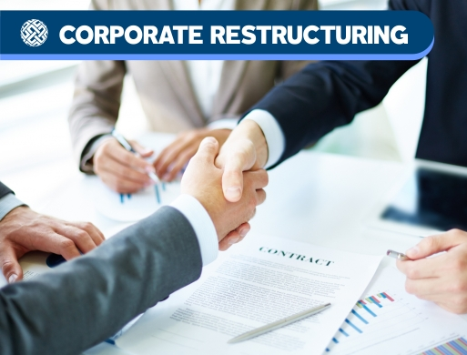 010 Corporate Restructuring