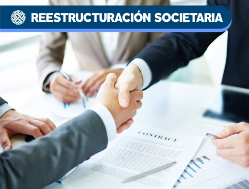010 Reestructuración Societaria
