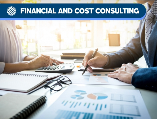 02 Advisory - Financial and Cost Consulting