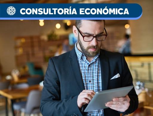 03 Advisory - Consultoría Económica