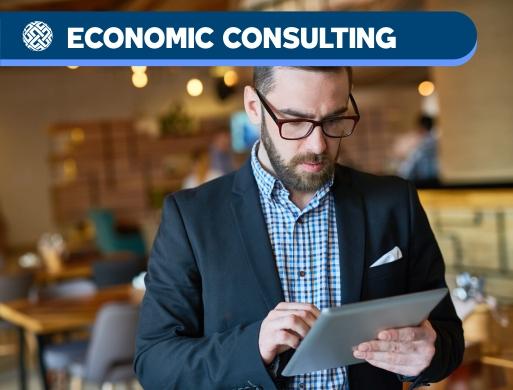 03 Advisory - Economic Consulting