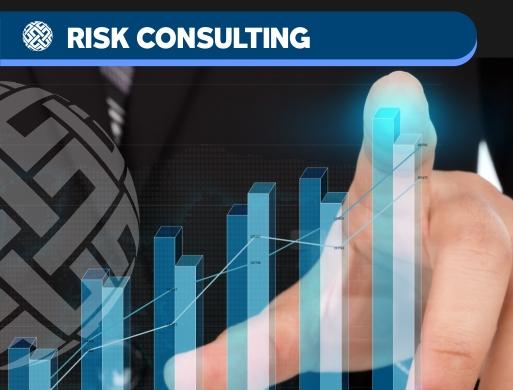 04 Advisory - Risk Consulting